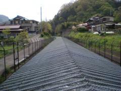20100501torisawasaruhashi-07.jpg