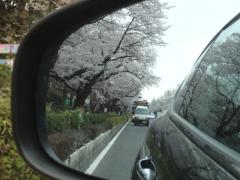 20160402kunitachi-03
