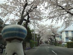 20160501goryokaku-03