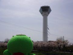 20160501goryokaku-24